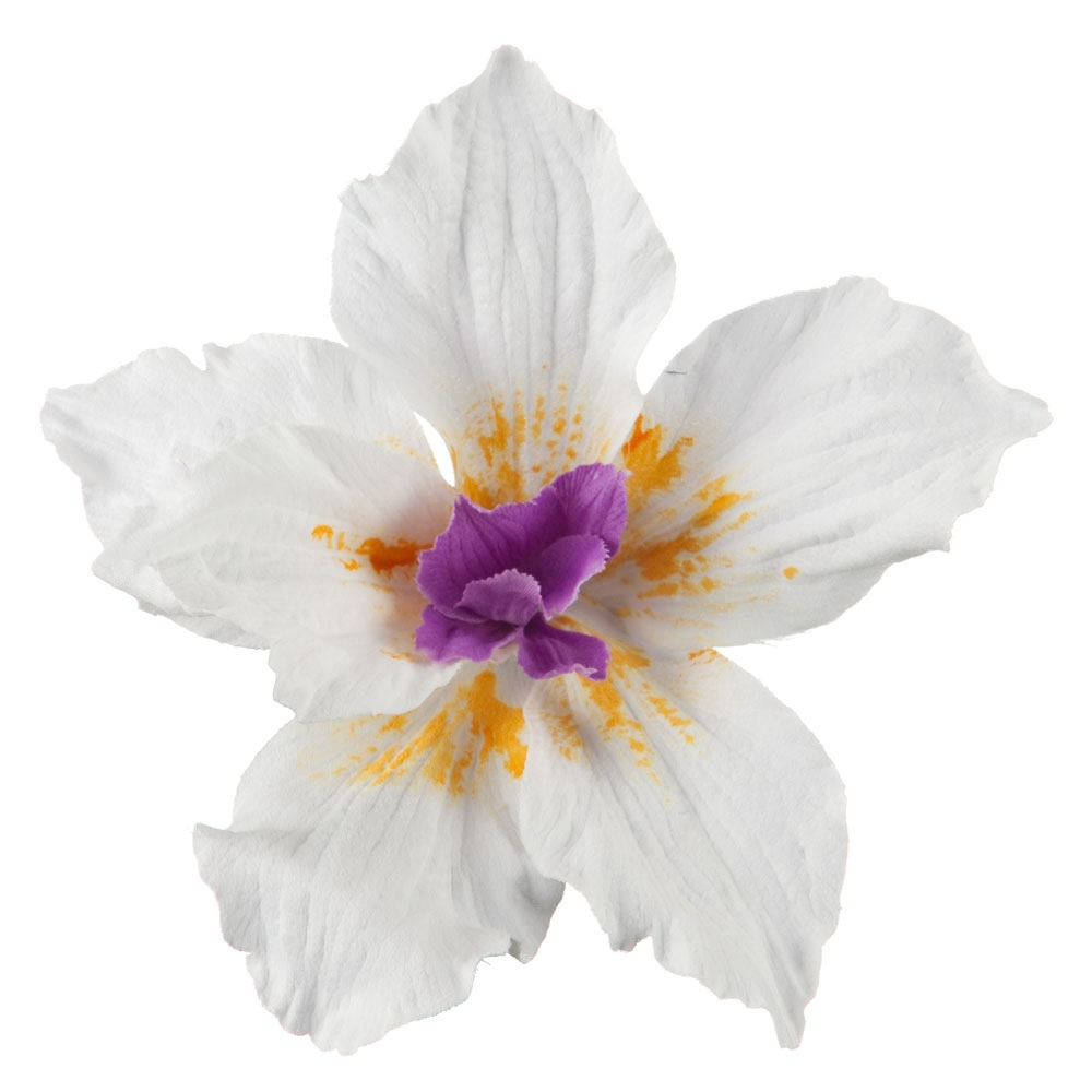 Lily Pin and Clip with Wire in Petals - White