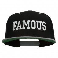 Famous Embroidered Two Tone Snapback Cap - Black Silver