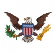 Other Military Large Patch - Brown Eagle