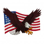 Other Military Large Patch - USA Eagle
