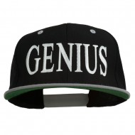 Genius Embroidered Two Toned Snapback Cap - Black Silver