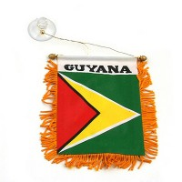 Banner - Guyana World Mini Banner