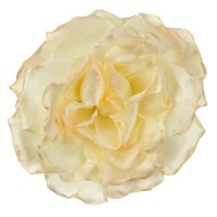Pin , Badge - Cream Large Open Rose Silk Clip Pin