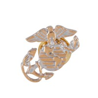 Pin , Badge - Silver Cloisonne Military Pins