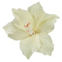 Pin , Badge - Beige Lily Pin , Clip in Petals