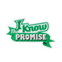 Patch - Green USA Keep the Promise Patches