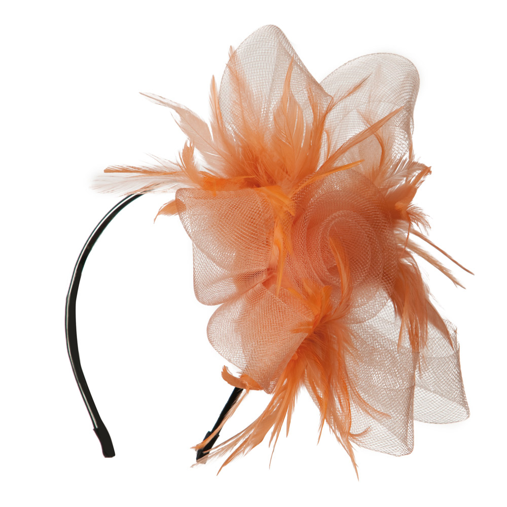 Fashionable Feather Accent Headband - Peach - Hats and Caps Online Shop - Hip Head Gear