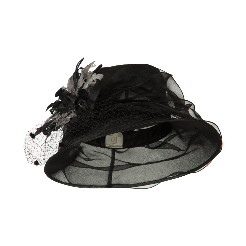 Double Glass Two Tone Feathers Organza Hat - Black - Hats and Caps Online Shop - Hip Head Gear