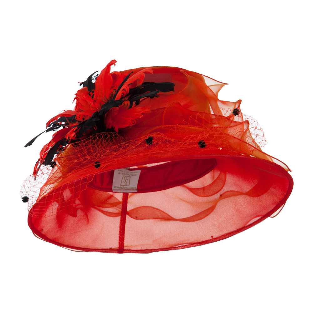 Double Glass Two Tone Feathers Organza Hat - Red - Hats and Caps Online Shop - Hip Head Gear